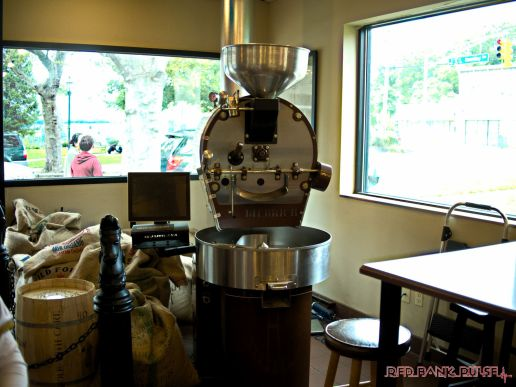 coffee-corral-pet-adoption-16