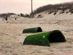 Clean Ocean Action Beach Sweeps 2 10 of 20