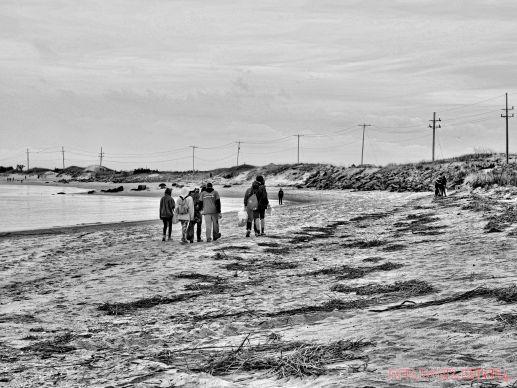 Clean Ocean Action Beach Sweeps 2 15 of 20