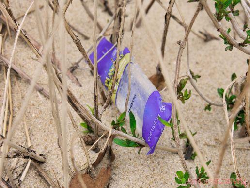 Clean Ocean Action Beach Sweeps 2 5 of 20