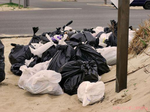 Clean Ocean Action Beach Sweeps 2 6 of 20