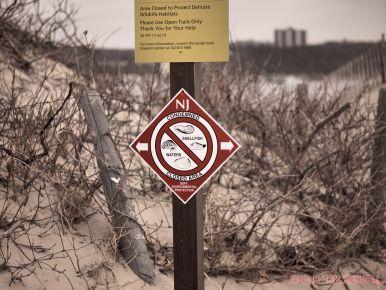 Clean Ocean Action Beach Sweeps 6 of 64