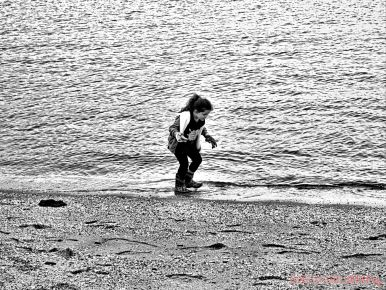 Clean Ocean Action Beach Sweeps 64 of 64