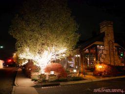 Nauvoo Grill Club 5 of 33