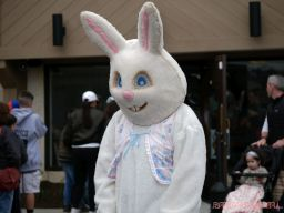 The Great Red Bank Egg Hunt 4 of 22