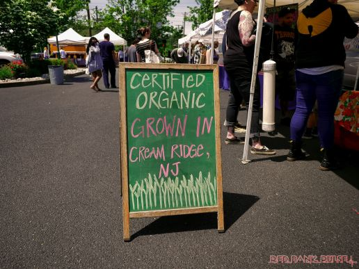 Red Bank Farmers Market 4 of 13