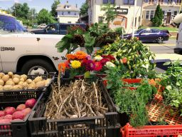 Red Bank Farmer's Market 6 of 48