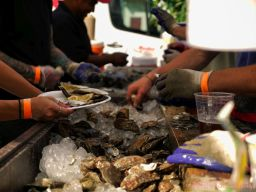 Guinness Oyster Festival 2017 51 of 75