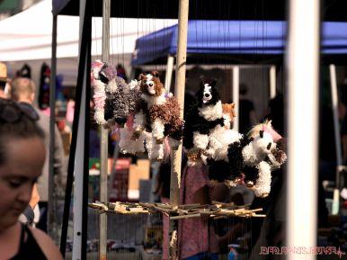 Red Bank Street Fair Fall 2017 28 of 63