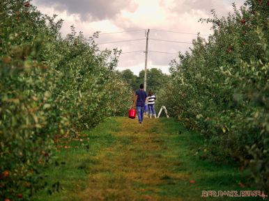 Battleview Orchards 35 of 52