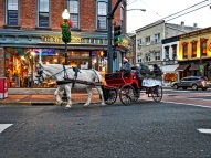 Horse Ride Red bank