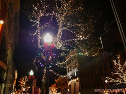 Red Bank Holiday Lights 7 of 9