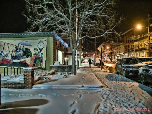 Red Bank Holiday Lights Night Snow 7 of 17