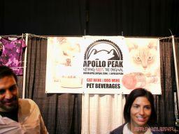 Catsbury Park Cat Convention 23 of 65