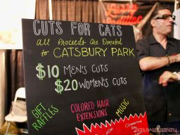Catsbury Park Cat Convention 26 of 65