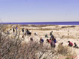 Clean Ocean Action Beach Sweeps 2018 33 of 64