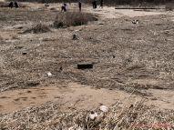 Clean Ocean Action Beach Sweeps 2018 43 of 64