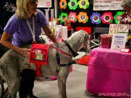 Super Pet Expo April 2018 47 of 117