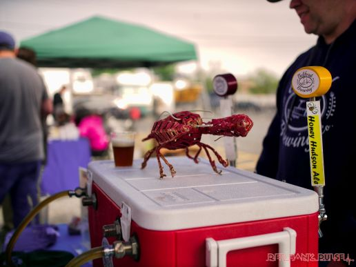Brew by the Bay Craft Beer Festival 40 of 78