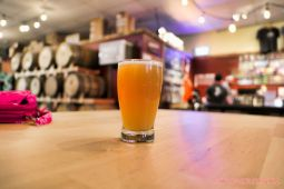 Jughandle Brewery Tinton Falls 27 of 34