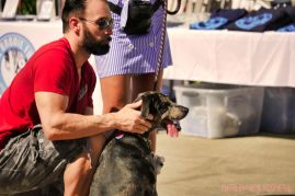 Strut Your Mutt 2018 with The Brodie Fund at The Boondocks Fishery 29 of 58