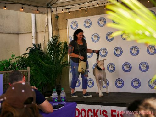 Strut Your Mutt 2018 with The Brodie Fund at The Boondocks Fishery 41 of 58