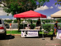 Strut Your Mutt 2018 with The Brodie Fund at The Boondocks Fishery 48 of 58