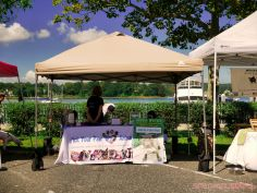 Strut Your Mutt 2018 with The Brodie Fund at The Boondocks Fishery 49 of 58