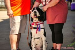 Strut Your Mutt 2018 with The Brodie Fund at The Boondocks Fishery 57 of 58