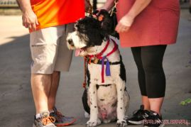 Strut Your Mutt 2018 with The Brodie Fund at The Boondocks Fishery 58 of 58