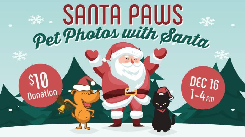 The Brodie Fund Santa Paws