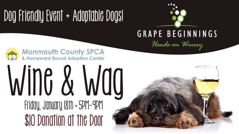 Wine & Wag at Grape Beginnings MCSPCA