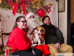 Home Free Animal Rescue with Santa Paws at Bradley Brew Project 28 of 53
