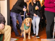 Home Free Animal Rescue with Santa Paws at Bradley Brew Project 30 of 53