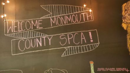monmouth county spca wine & wag at grape beginnings winery 35 of 67