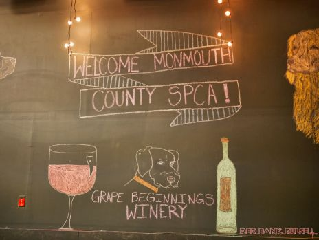 monmouth county spca wine & wag at grape beginnings winery 66 of 67