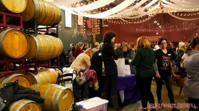 monmouth county spca wine & wag at grape beginnings winery 9 of 67