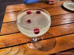 triumph brewing company 7 of 16 cocktail martini
