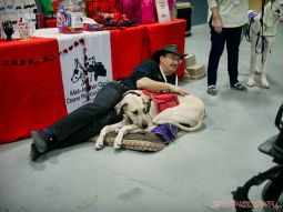 Super Pet Expo 2019 31 of 58