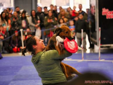 Super Pet Expo 2019 Day 2 61 of 96
