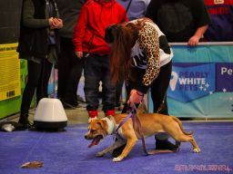 Super Pet Expo 2019 Day 2 78 of 96