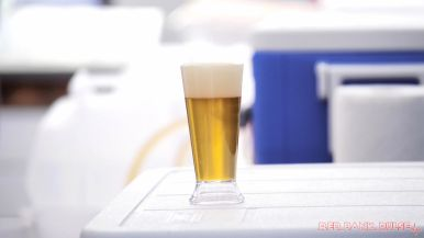 Brew by the Bay 2019 Craft Beer Festival 30 of 56